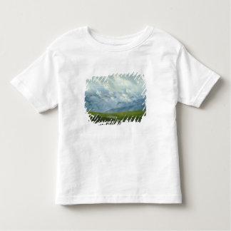 Drifting Clouds Toddler T-Shirt