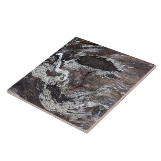 Driftwood 1 large square tile