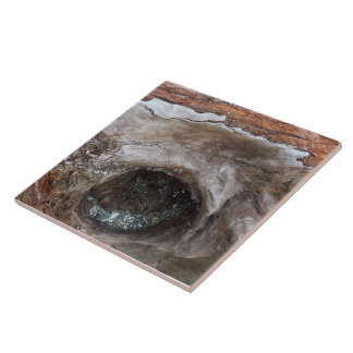 Driftwood 3 large square tile