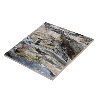 Driftwood 5 large square tile