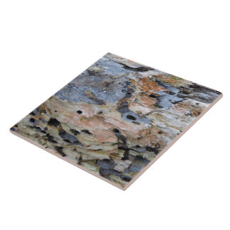 Driftwood 6 large square tile