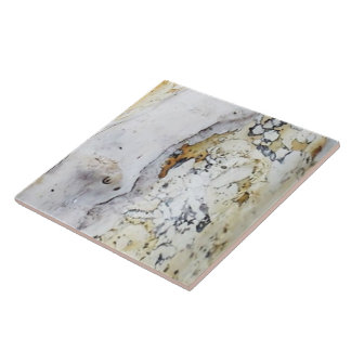 Driftwood 8 large square tile
