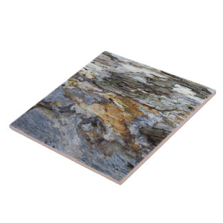 Driftwood 9 large square tile