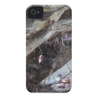 Driftwood Find the Fairy Case-Mate iPhone 4 Case