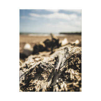 Driftwood Gallery Wrapped Canvas