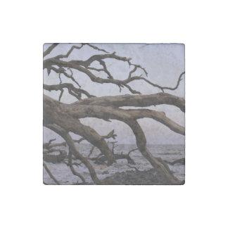 Driftwood Moon Stone Magnet