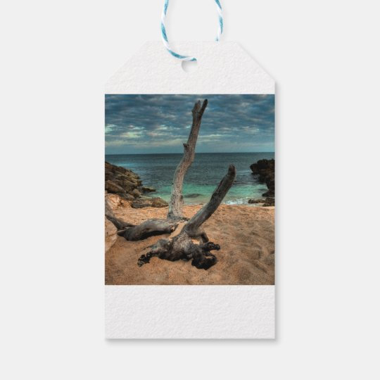 Driftwood on a Beach in Jamaica Gift Tags