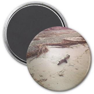 Driftwood on Sullivans Island 7.5 Cm Round Magnet