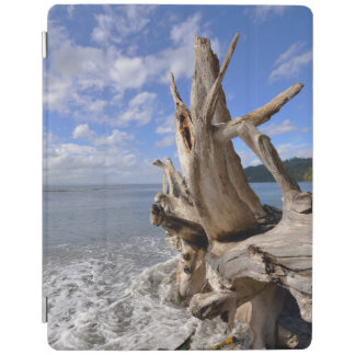 Driftwood On The Shoreline Of French Beach iPad Cover