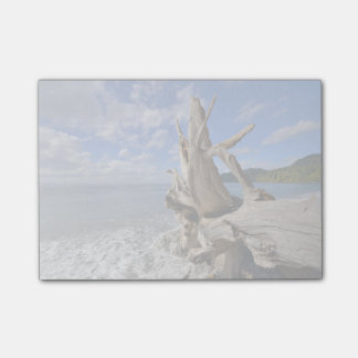 Driftwood On The Shoreline Of French Beach Post-it Notes