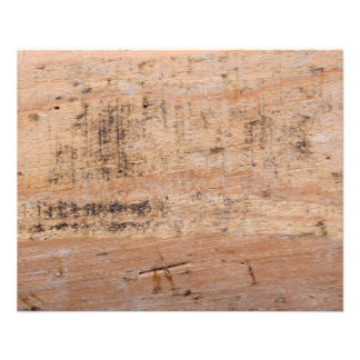 Driftwood Picture. 11.5 Cm X 14 Cm Flyer