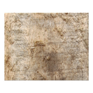 Driftwood Picture. Image of Weathered Wood. Flyers
