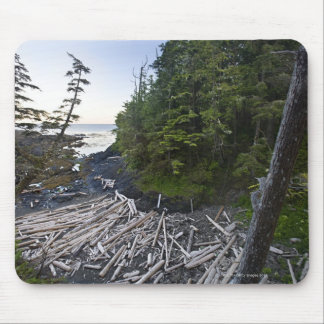 Driftwood piled up on a small secluded beach mouse mat