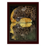 DRINKING LEOPARD at SUNSET Art Poster