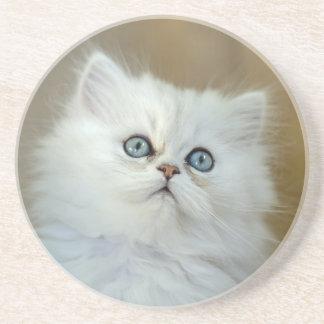 Drinks Coaster - Chinchilla Kitten
