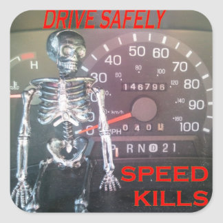 Drive Safely - Speed Kills Sticker