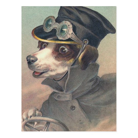 Driver Dog Vintage Illustration Postcard