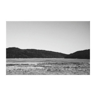 Driving Scenes - Driftwood Stretched Canvas Prints