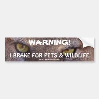 Driving Wildlife Safety Cougar Eyes Bumper Sticker
