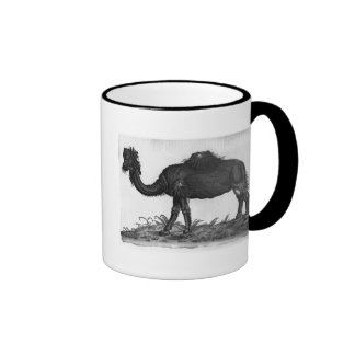 Dromedary, from 'Historial Animalium' Mugs