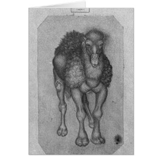 Dromedary, from the The Vallardi Album Card