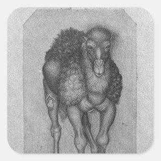 Dromedary, from the The Vallardi Album Square Stickers