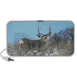 Drop antler buck iPod speakers