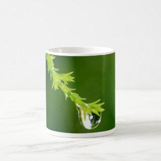 drop coffee mugs
