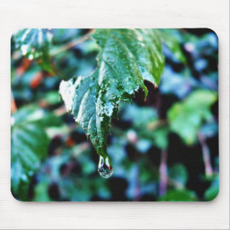 Drop Of Rain Mouse Pad