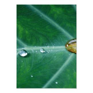 Drop of rain on a green leaf 13 cm x 18 cm invitation card