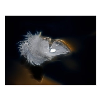 Droplet of water on a white feather postcard