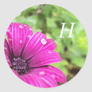 Droplets on Purple Daisy, Customizable Classic Round Sticker