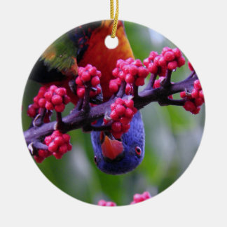 Dropping in for a snack - Rainbow Lorikeet Round Ceramic Decoration