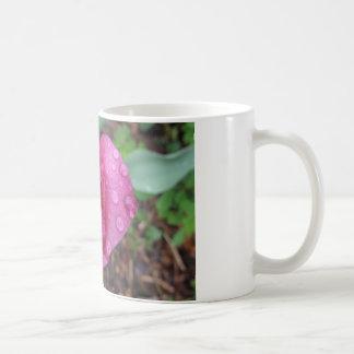 Drops on Pink Tulip Basic White Mug