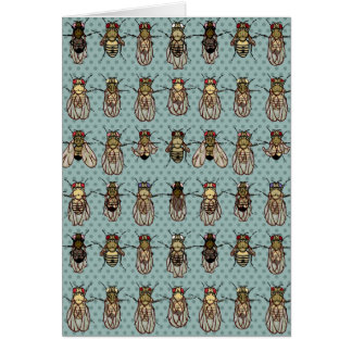 Drosophila Fruit Fly Genetics Greeting Card