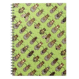 Drosophila Fruit Fly Genetics - mutants - Lime Notebooks