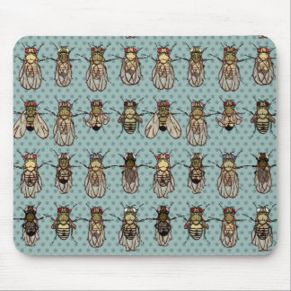 Drosophila mutants mouse mat