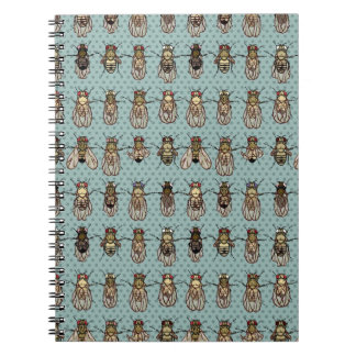Drosophila mutants notebooks