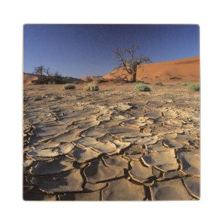 Drought In Africa, Namib Desert, Namibia Wood Coaster