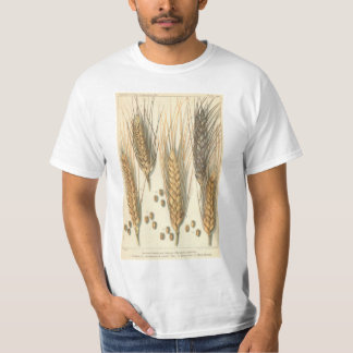 Drought Resistant Wheat Plant, Vintage Agriculture Tee Shirts