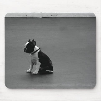 DRU puppy boston terrier Mouse Mat