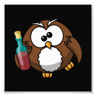 Drunk Owl Photograph