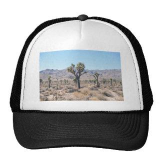 Dry brush and trees in the desert cap