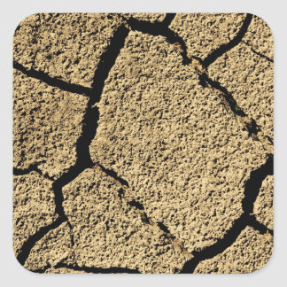 Dry land with cracked earth in drought square sticker
