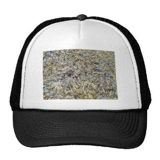 Dry Leaves Texture Cap