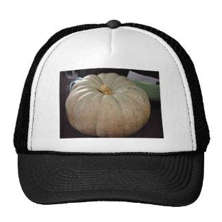 Dry pale pumpkin hats