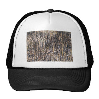 Dry Reeds Field Hats