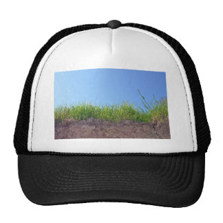 Dry Reeds Texture Mesh Hats