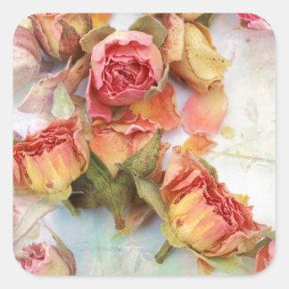 Dry roses vintage design square sticker