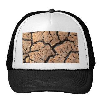 dry  soil  / crack earth cap